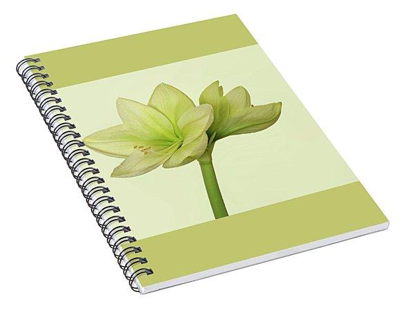 Moonlight Amaryllis II Spiral Notebook