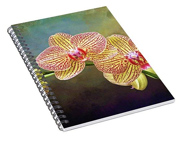 Moth Orchids Spiral Notebook