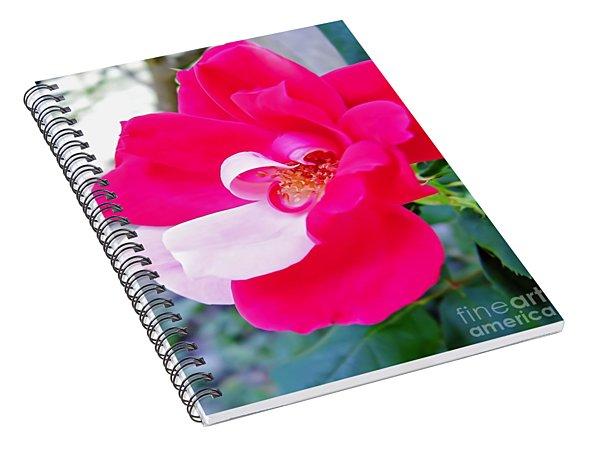 Mother - Natures - Best Spiral Notebook