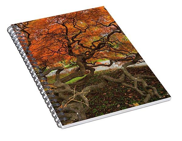 Mount Auburn Cemetery Beautiful Japanese Maple Tree Orange Autumn Colors Branches Spiral Notebook