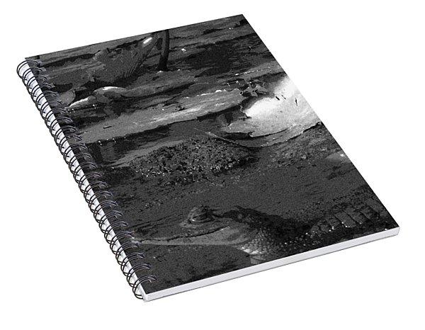Mr. Caiman Spiral Notebook