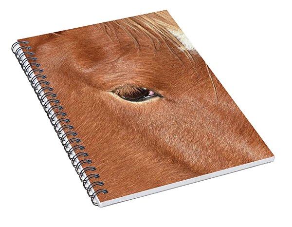 Mustang Macro Spiral Notebook