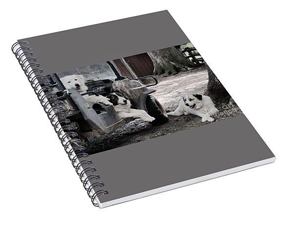 My Helpers Spiral Notebook