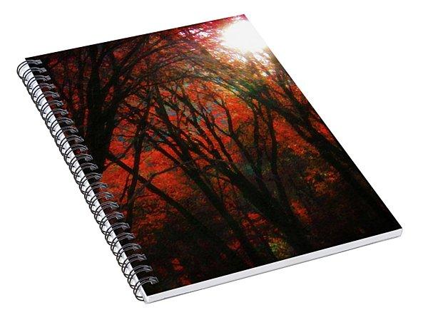 November Woods Spiral Notebook