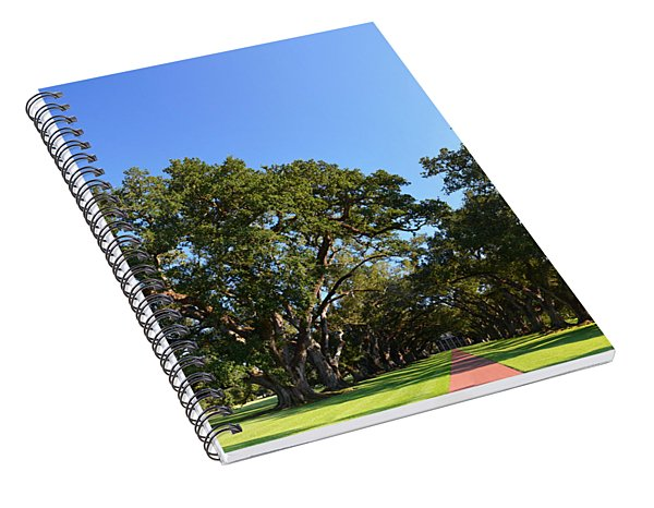 Oak Alley Plantation Panoramic Spiral Notebook