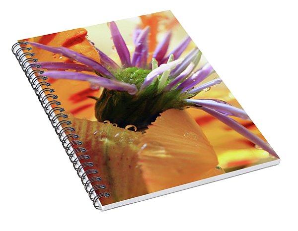 Orange And Purple Flowers Spiral Notebook