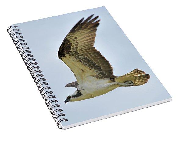 Osprey Upswing Spiral Notebook