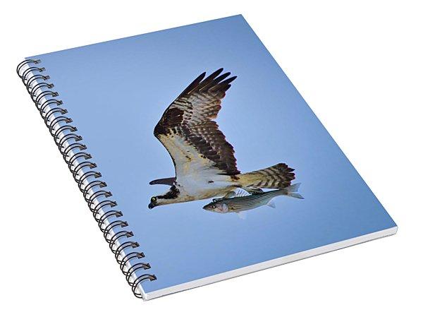 Osprey With Rockfish Spiral Notebook