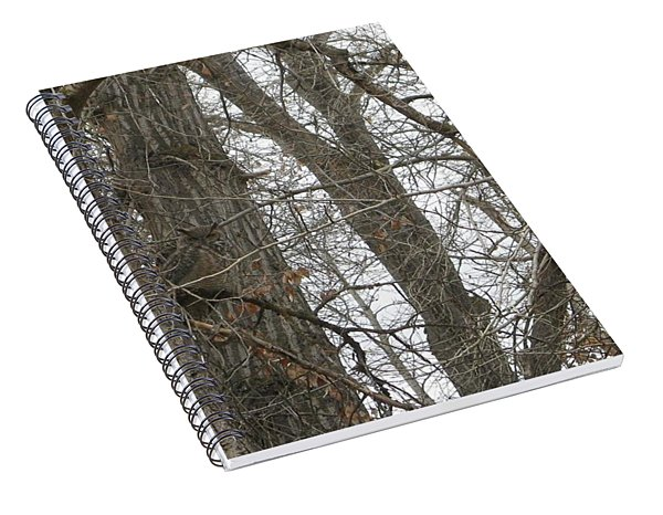 Owl In Camouflage Spiral Notebook
