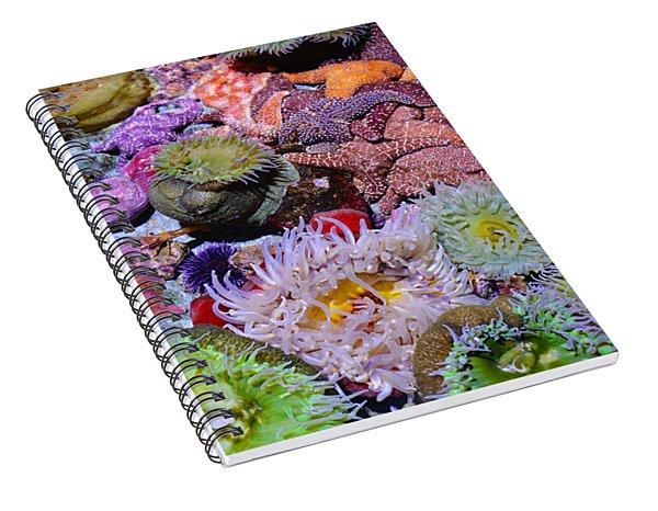 Pacific Ocean Reef Spiral Notebook
