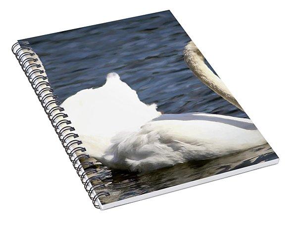 Painted Mute Swans Of Lake Junaluska North Carolina II Spiral Notebook