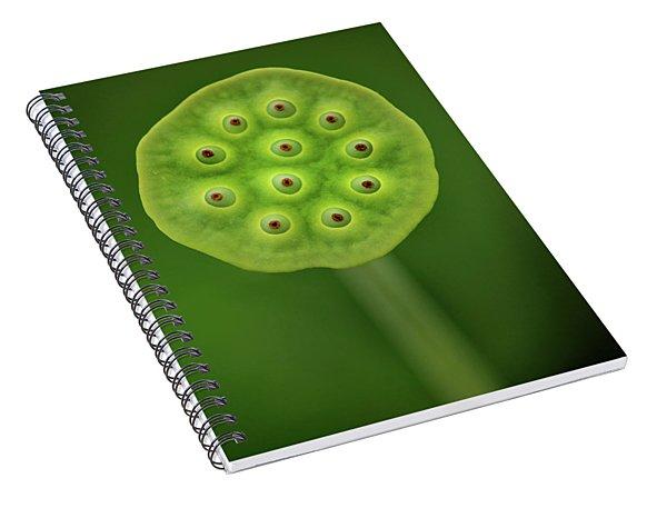 Past Prime Spiral Notebook