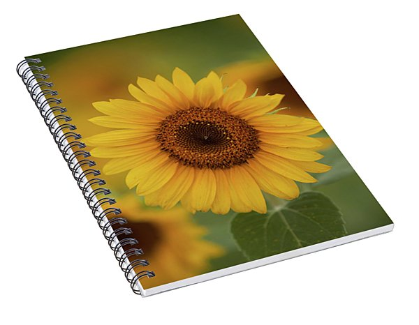 Patch Of Sunflowers Spiral Notebook