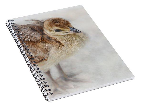 Pea Chick Cuteness Spiral Notebook