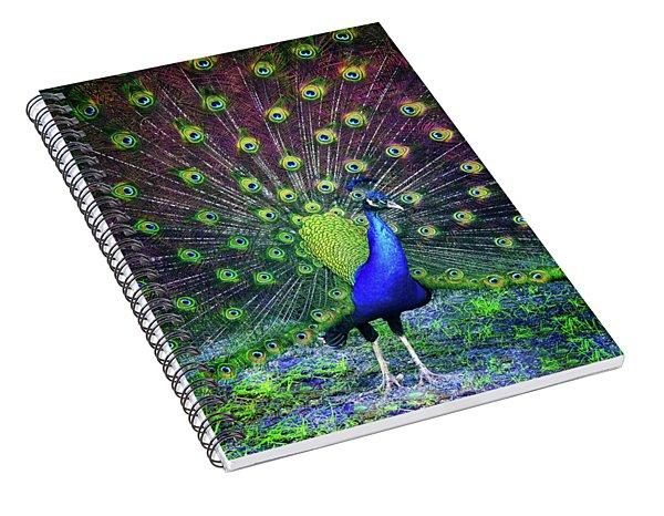 Peacock Series 9801 Spiral Notebook