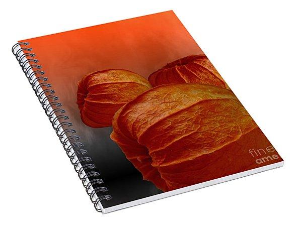 Physalis Spiral Notebook