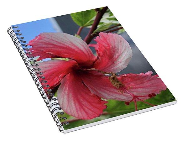 Pinwheel Pretty Spiral Notebook