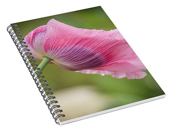 Poppy In The Wind Spiral Notebook