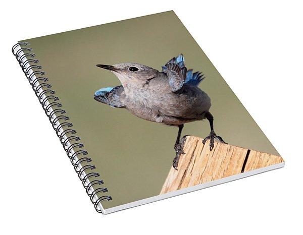 Pretty Pose Spiral Notebook