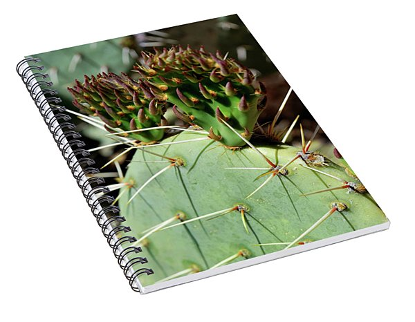 Prickly Pear Buds Spiral Notebook
