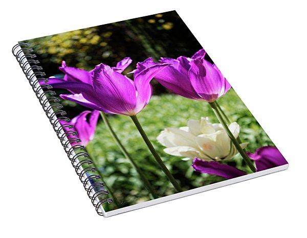 Purple Cups Spiral Notebook