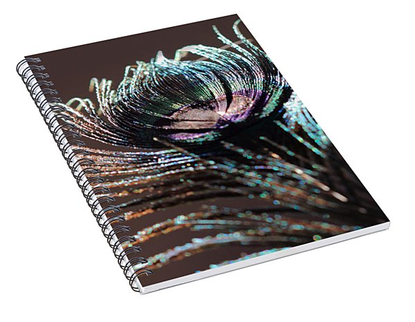 Purple Peacock Feather Spiral Notebook
