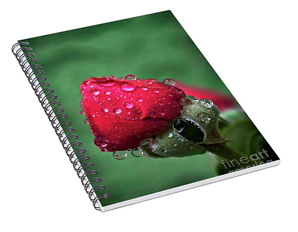 Raindrops On Roses Spiral Notebook