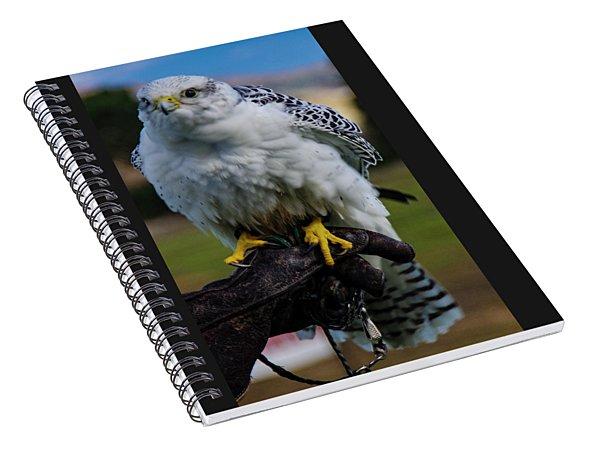 Ramona Hawk 1 Spiral Notebook
