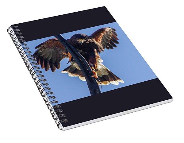 Ramona Hawk 7 Spiral Notebook