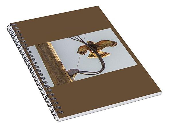Ramona Hawk Watch 4 Spiral Notebook