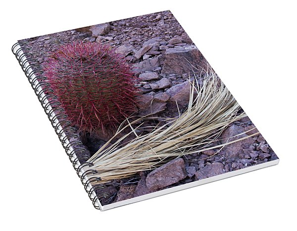 Red Barrel And Palm Spiral Notebook
