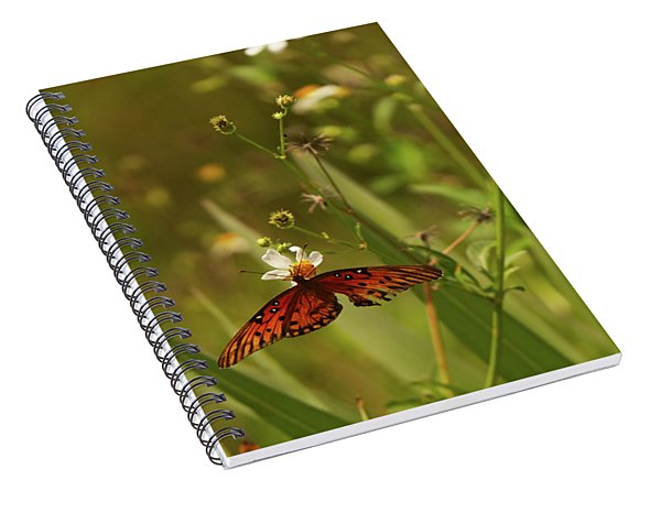 Red Butterfly In Daisy Field Spiral Notebook