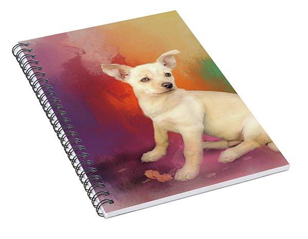 Reilly Spiral Notebook