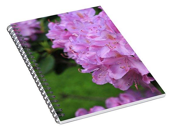 Rhododendron Spiral Notebook