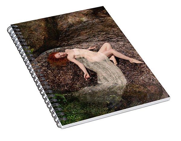Rock Bathing Spiral Notebook