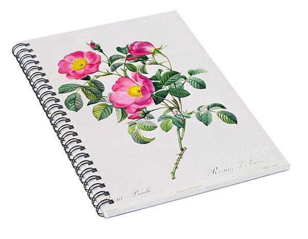 Rosa Lumila Spiral Notebook
