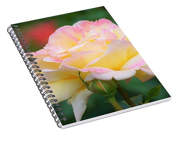 Rose Beauty Spiral Notebook