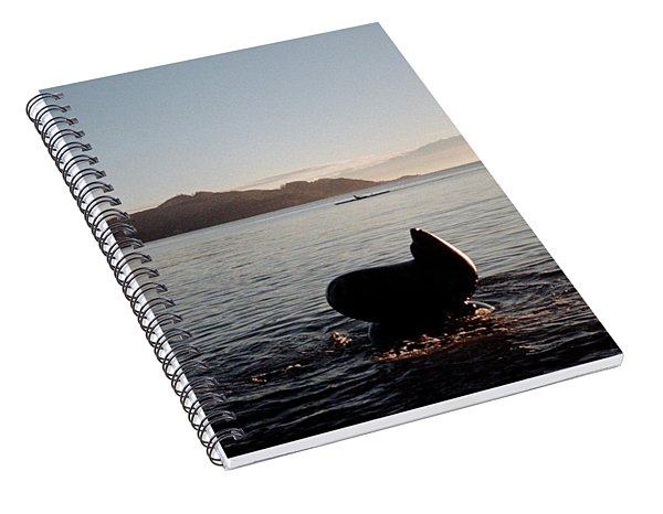 Rowing Off Sausalito, Ca Spiral Notebook