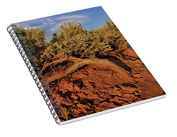 Sagebrush At Sunset Spiral Notebook