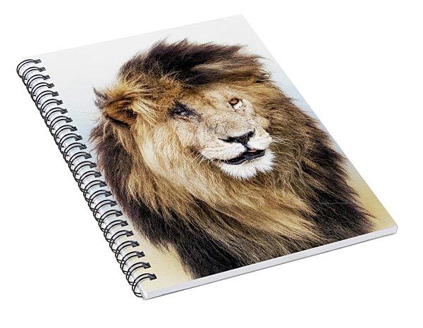 Scar Lion Closeup Square Spiral Notebook