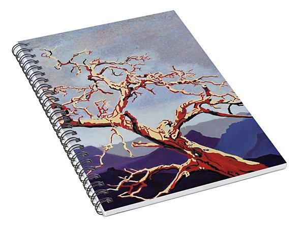 Scarlett's Live Oak Spiral Notebook