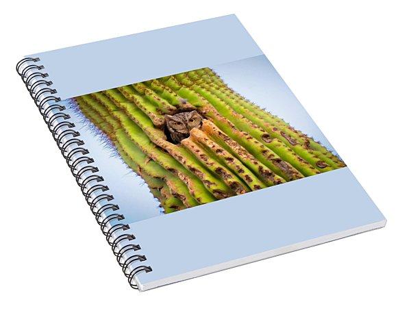 Screech Owl In Saguaro Spiral Notebook