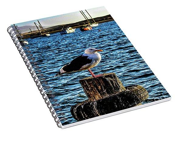Seagull Perch Spiral Notebook