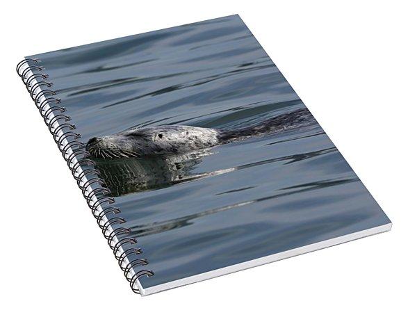 Seal Delight Spiral Notebook
