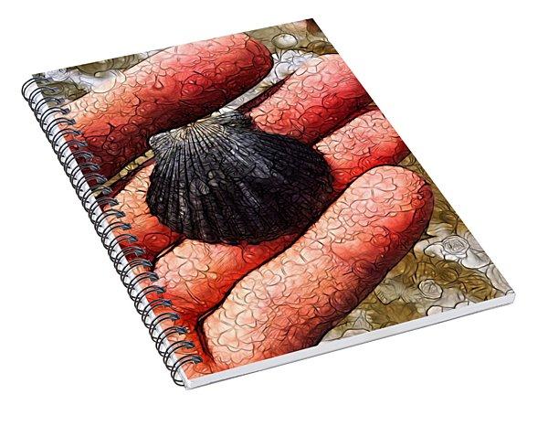 Seashells By The Seashore Spiral Notebook
