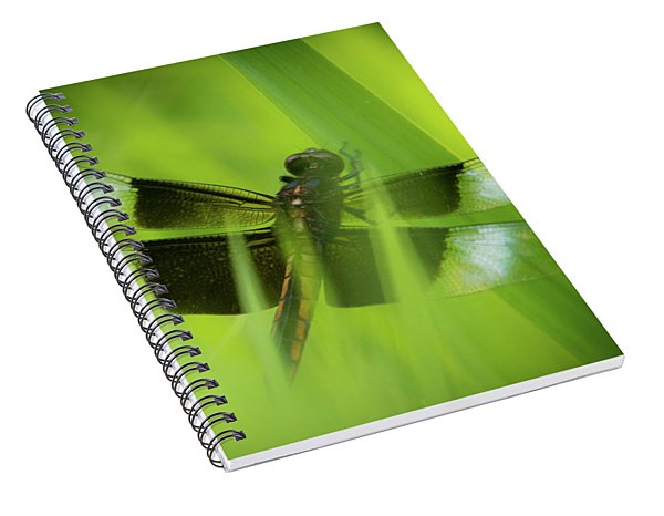 Secret Dragon Spiral Notebook
