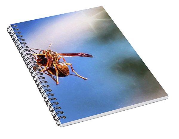 Self Reflection Spiral Notebook