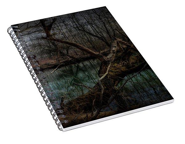 Silent Forest Spiral Notebook