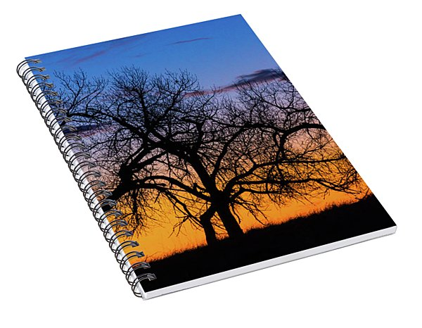 Silhouettes Of A Spring Sunrise Spiral Notebook