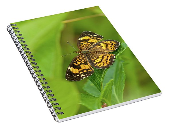 Silvery Checkerspot Butterfly Spiral Notebook
